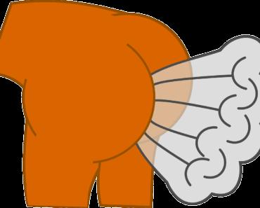 Prdy zvuky - aneb 8 typů prdů
